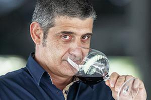 Aldo De Luca, Weindegustation und Weinhandel Reutlingen